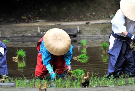 写真:田植祭