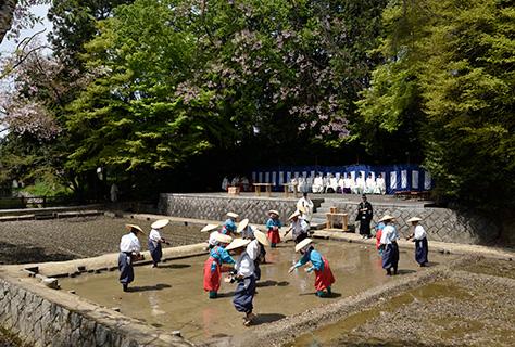水口播種祭